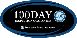 100Day_Decal